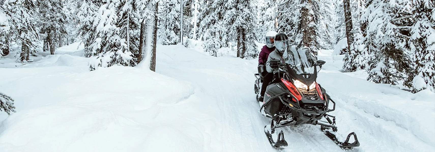 Ski-Doo - 2021 Expedition Xtreme