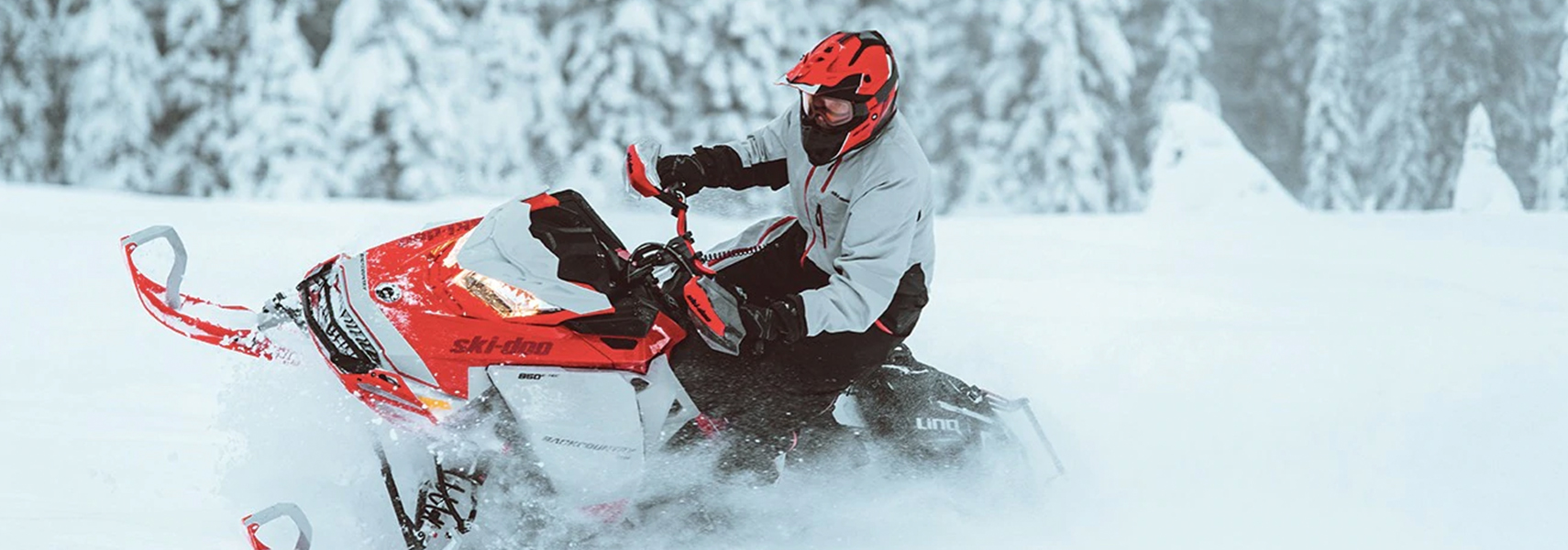 Ski-Doo - 2021 Backcountry